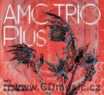 AMC TRIO PLUS WITH REGINA CARTER & ERIC MARIENTHAL (2019)
