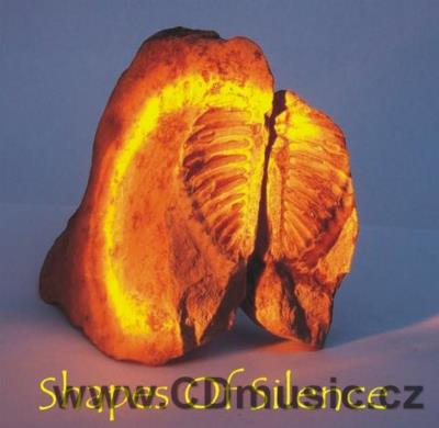 MATOUŠEK V. SHAPES OF SILENCE An electroacoustic eccentric composition for Tibetan bowls,