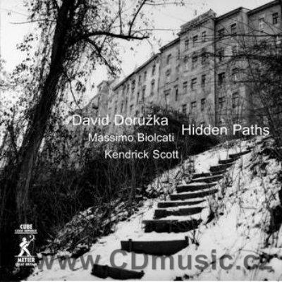 DORŮŽKA D. HIDDEN PATHS / D.Dorůžka guitar, M.Biolcati bass, K.Scott drums (2004)